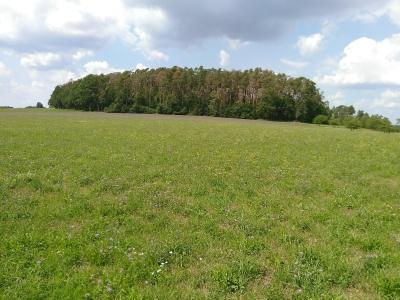 LK Forchheim